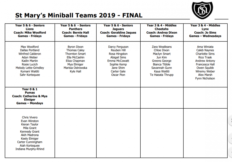 Miniball Teams 2019 FINAL.PNG